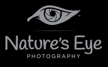 Nature's Eye Photography